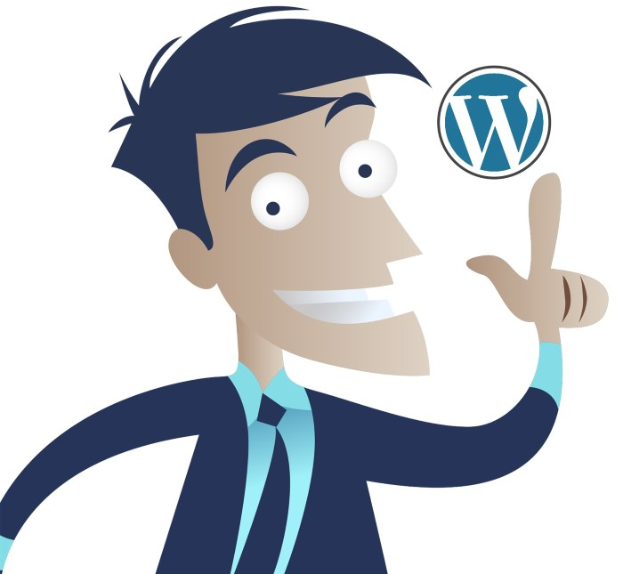 Wordpress programmør